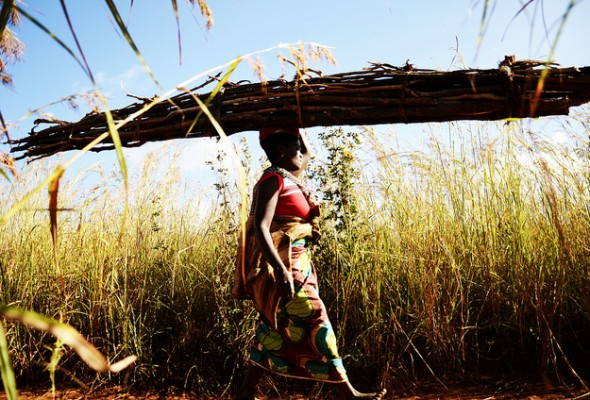 Study on Land Grabbing for European Parliament