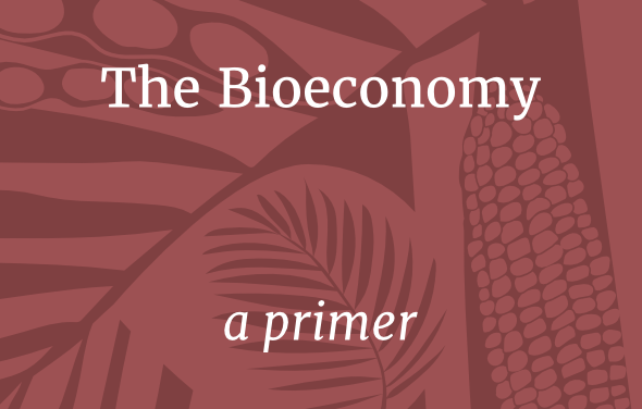 New Hands on the Land Publication on Bioeconomy