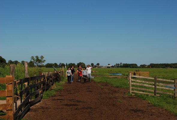 Training weekend: Food Sovereignty in Practice