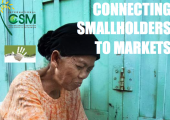 Connecting smallholders to markets