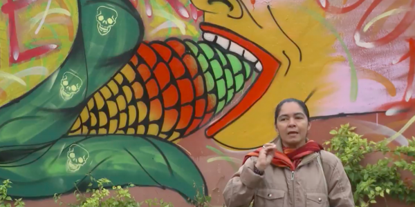 Video: Fight for Free Seeds in Paraguay
