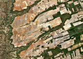 International mission to measure human rights impact of land grabbing kicks off