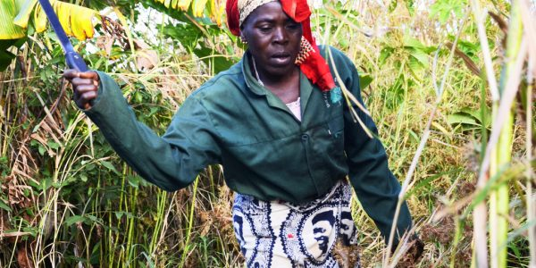 Land grabbing abroad is an EU human rights issue